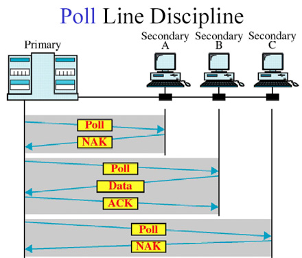 Line Discipline 3