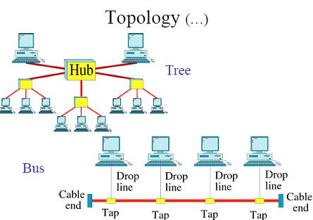 Tree and Bus Topology